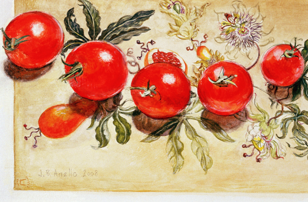 Tomatoes on Merian card #2